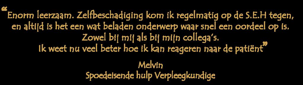Melvin-SEH-geel-e1612707043265-1024x289 Doelgroepen