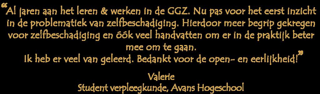 Valerie-avans-geel-1-1024x301 Doelgroepen